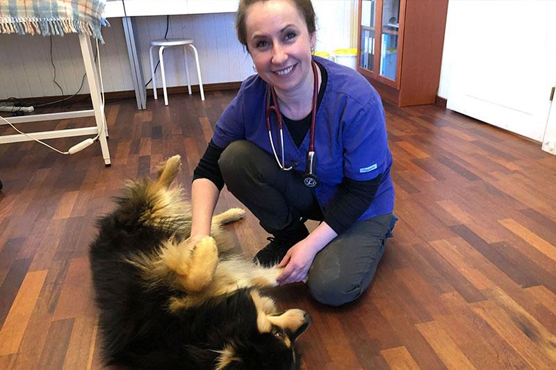 Besøgs dyrlæge i Frederikshavn